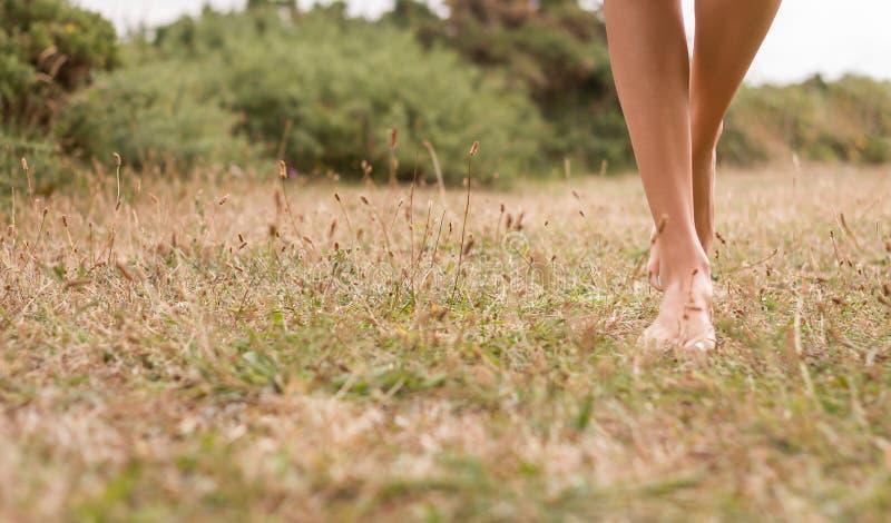 Νέα θηλυκά πόδια που περπατούν στη χλόη στοκ φωτογραφία