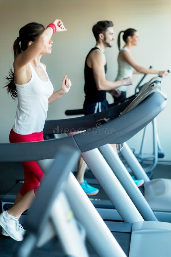 Νέα και όμορφη κυρία που τρέχει treadmill και έναν ιδρώτα στοκ εικόνα με δικαίωμα ελεύθερης χρήσης