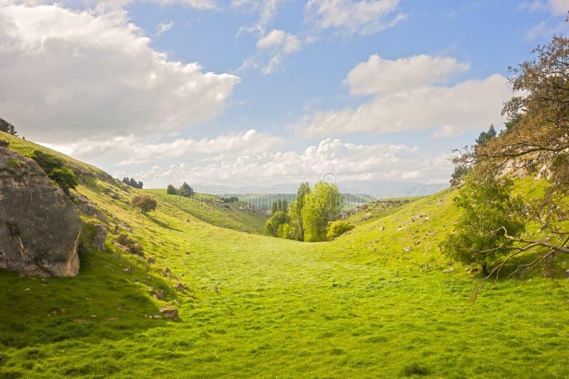 νέα κοιλάδα ιδιότροπη Ζηλανδία στοκ εικόνες με δικαίωμα ελεύθερης χρήσης