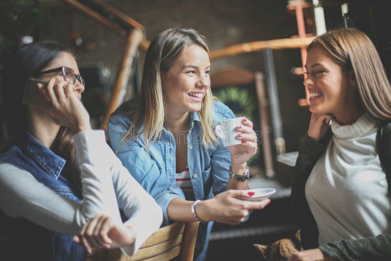 Νέα κορίτσια που έχουν τη διασκέδαση στον καφέ στοκ εικόνες