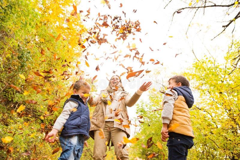 Νέα μητέρα με τους γιους της στο δάσος φθινοπώρου στοκ εικόνα με δικαίωμα ελεύθερης χρήσης