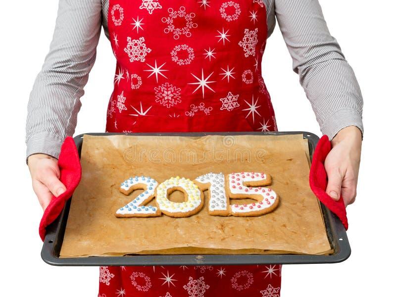 Νέα μπισκότα έτους στοκ εικόνα