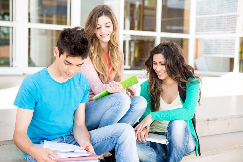 Νέα ομάδα σπουδαστών στην πανεπιστημιούπολη στοκ φωτογραφίες με δικαίωμα ελεύθερης χρήσης