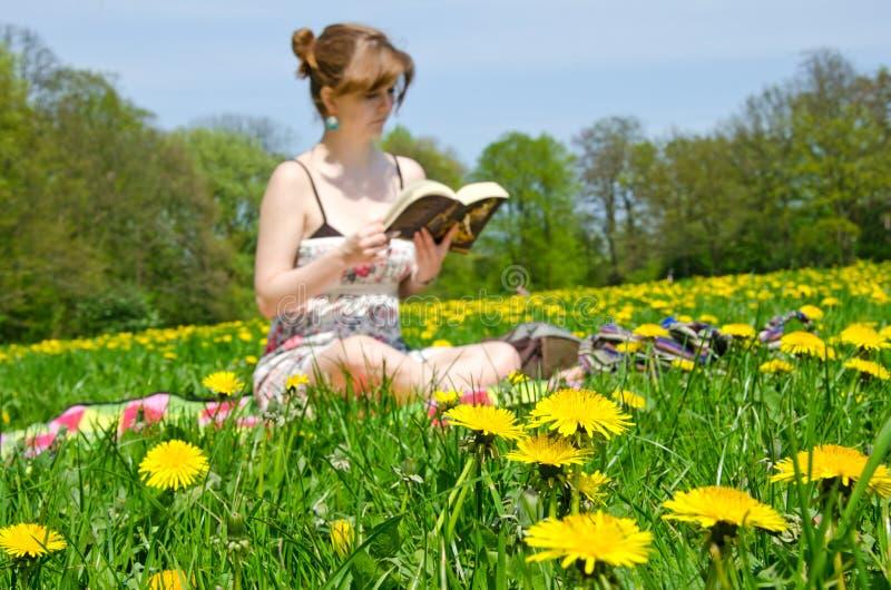 Νέα συνεδρίαση γυναικών σε ένα λιβάδι λουλουδιών και ανάγνωση ένα βιβλίο στοκ εικόνες