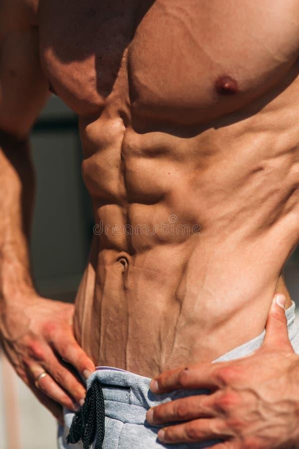 Νέα τοποθέτηση αθλητών με έναν κορμό για τη φωτογραφία σε ένα υπόβαθρο τουβλότοιχος Bodybuilder, αθλητής με τους αντλημένους μυς στοκ φωτογραφία με δικαίωμα ελεύθερης χρήσης