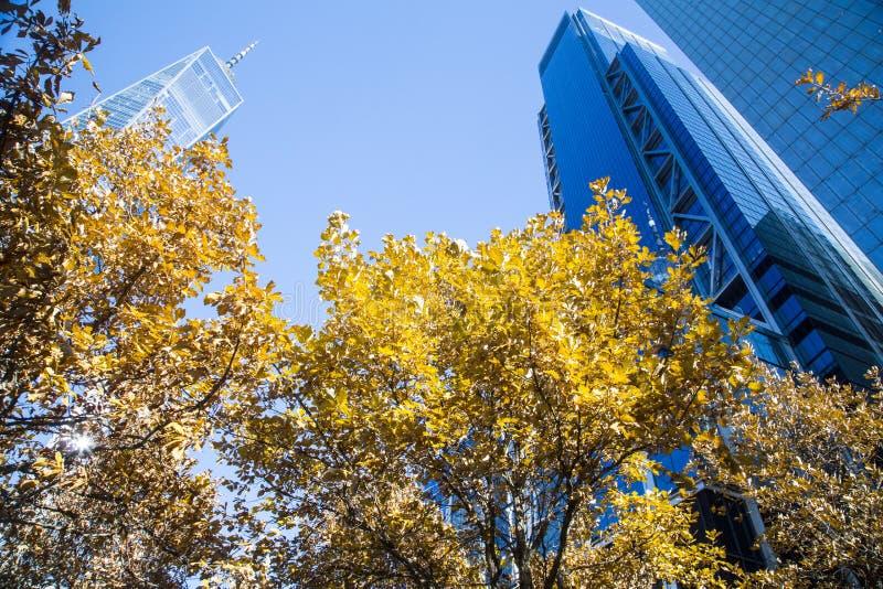 Νέα Υόρκη, Λόουερ Μανχάταν και οικονομική περιοχή στοκ φωτογραφία