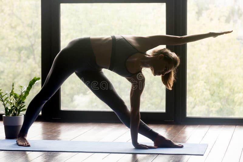 Νέα φίλαθλη γυναίκα που κάνει την άσκηση Utthita Trikonasana στοκ φωτογραφίες με δικαίωμα ελεύθερης χρήσης