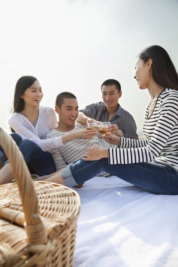 Νέα φρυγανιά φίλων μεταξύ τους στο πικ-νίκ τους στην παραλία στοκ φωτογραφία με δικαίωμα ελεύθερης χρήσης