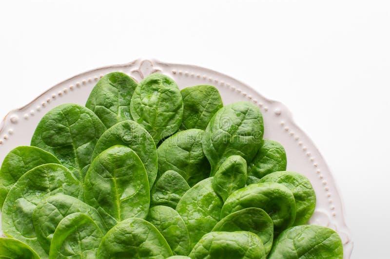 Νέα φύλλα του σπανακιού σε ένα πιάτο διάστημα αντιγράφων Detox, ένα συστατικό διαιτητικών τροφίμων - πράσινο οργανικό σπανάκι στοκ φωτογραφία με δικαίωμα ελεύθερης χρήσης