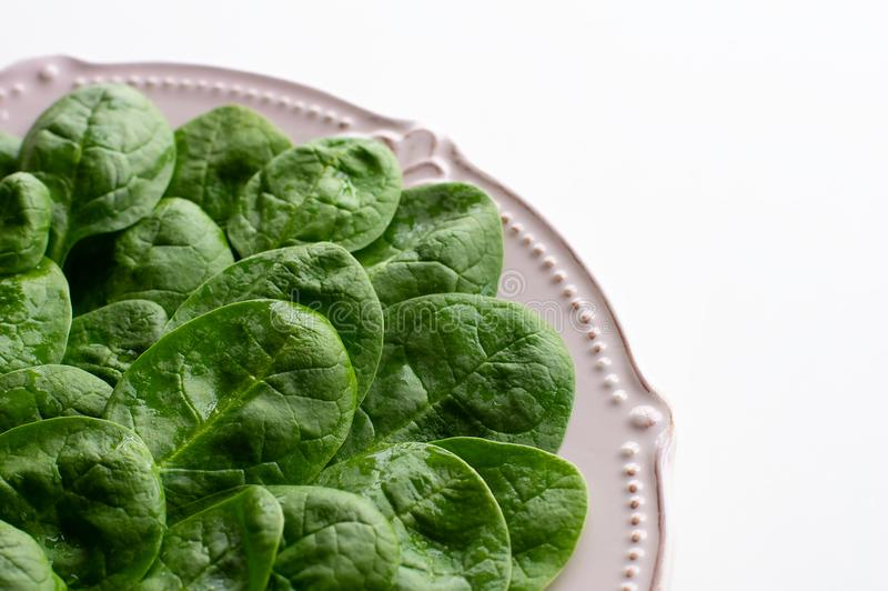 Νέα φύλλα του σπανακιού σε ένα πιάτο διάστημα αντιγράφων Detox, ένα συστατικό διαιτητικών τροφίμων - πράσινο οργανικό σπανάκι στοκ εικόνα