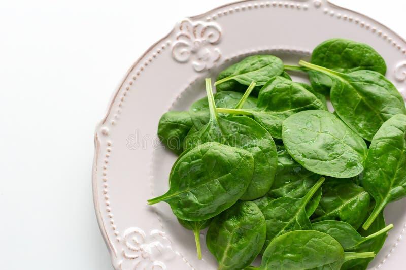 Νέα φύλλα του σπανακιού σε ένα πιάτο διάστημα αντιγράφων Detox, ένα συστατικό διαιτητικών τροφίμων - πράσινο οργανικό σπανάκι στοκ εικόνες με δικαίωμα ελεύθερης χρήσης