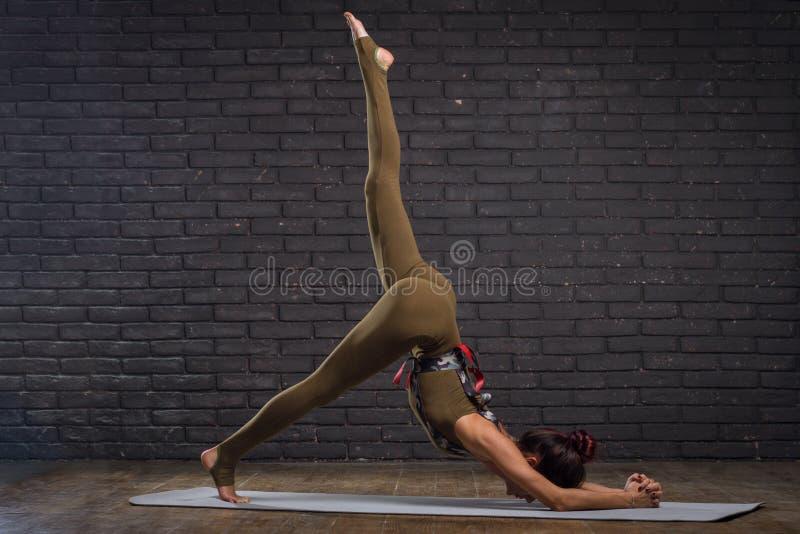 Νέα όμορφη γιόγκα άσκησης γυναικών στοκ εικόνες