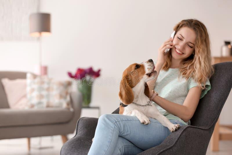 Νέα όμορφη γυναίκα που μιλά στο τηλέφωνο κτυπώντας το σκυλί της στο σπίτι στοκ εικόνες