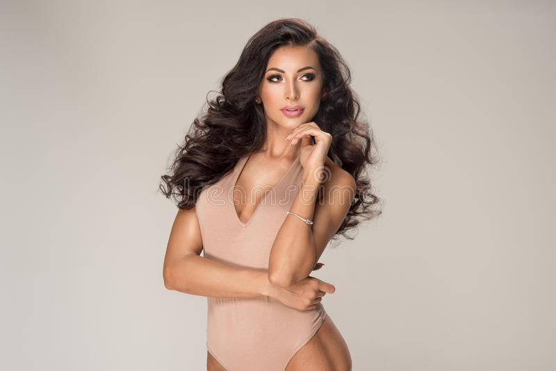 Νέα όμορφη προκλητική γυναίκα brunette στοκ εικόνες με δικαίωμα ελεύθερης χρήσης