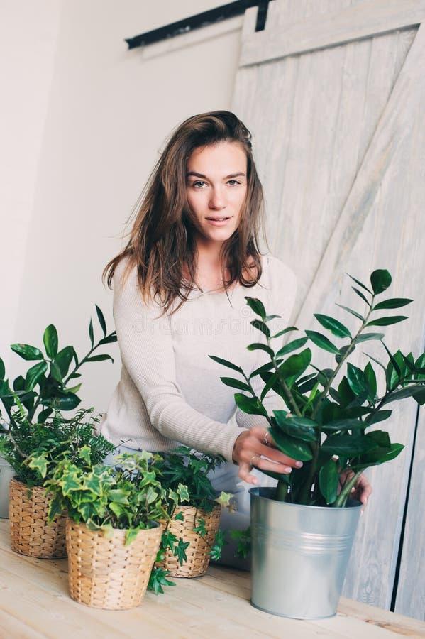 Νέα flowerpots ποτίσματος γυναικών στο σπίτι Περιστασιακή σειρά τρόπου ζωής στο σύγχρονο Σκανδιναβικό εσωτερικό στοκ εικόνα με δικαίωμα ελεύθερης χρήσης