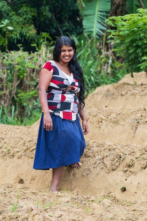 Νέες τοπικές στάσεις γυναικών στη φυτεία τσαγιού στοκ εικόνες