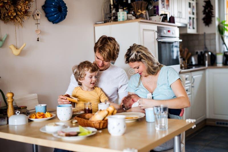 Νέοι γονείς με το νεογέννητο μωρό και το μικρό γιο μικρών παιδιών στο σπίτι στοκ φωτογραφία