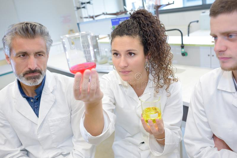 Νέοι επιστήμονες που εργάζονται στο εργαστήριο στοκ φωτογραφίες με δικαίωμα ελεύθερης χρήσης