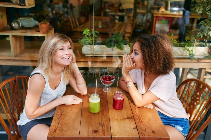 Νέοι θηλυκοί φίλοι που έχουν τα ιδιωτικά κουτσομπολιά στον καφέ στοκ φωτογραφία με δικαίωμα ελεύθερης χρήσης