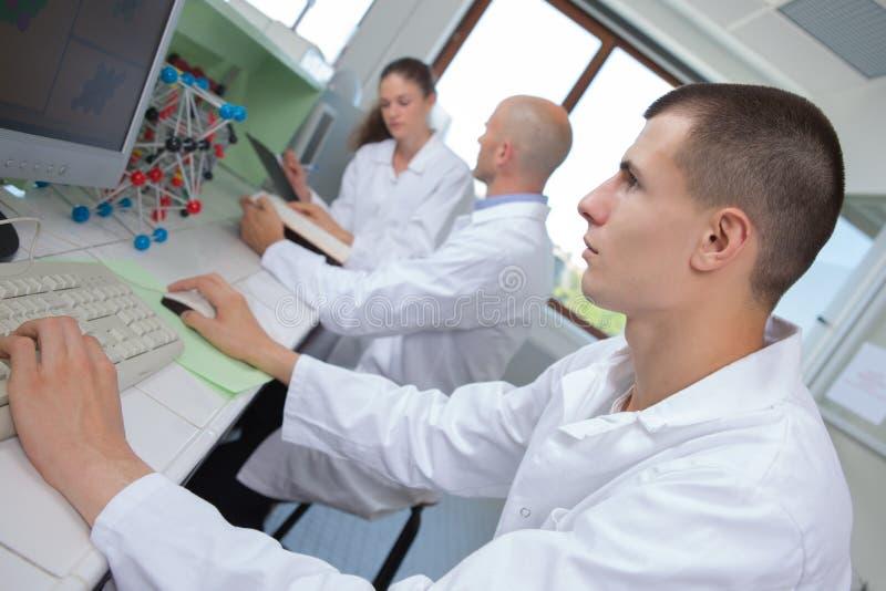 Νέοι ιατρικοί τεχνικοί που εργάζονται στο εργαστήριο στοκ εικόνες