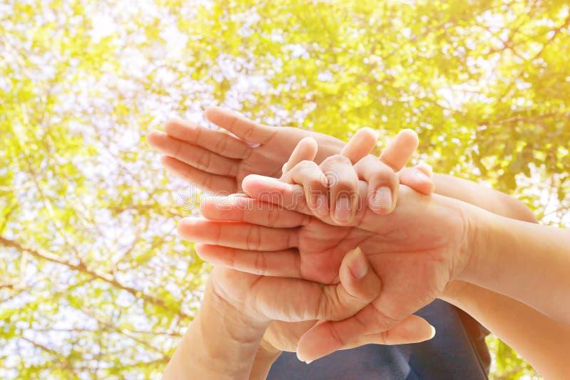 Νέοι που ενώνουν τα χέρια μαζί στο υπόβαθρο φύσης Ενότητα και ομαδική εργασία έννοιας στοκ φωτογραφίες με δικαίωμα ελεύθερης χρήσης