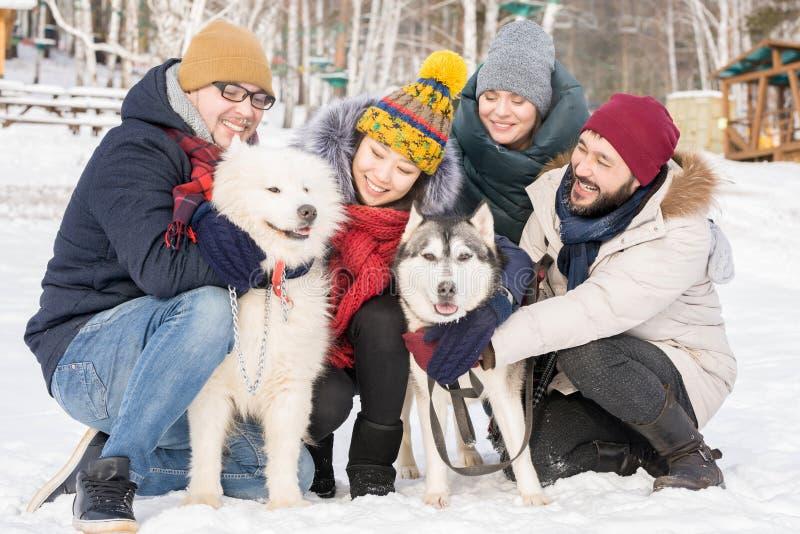 Νέοι που θέτουν με τα καθαρής φυλής σκυλιά στοκ φωτογραφία