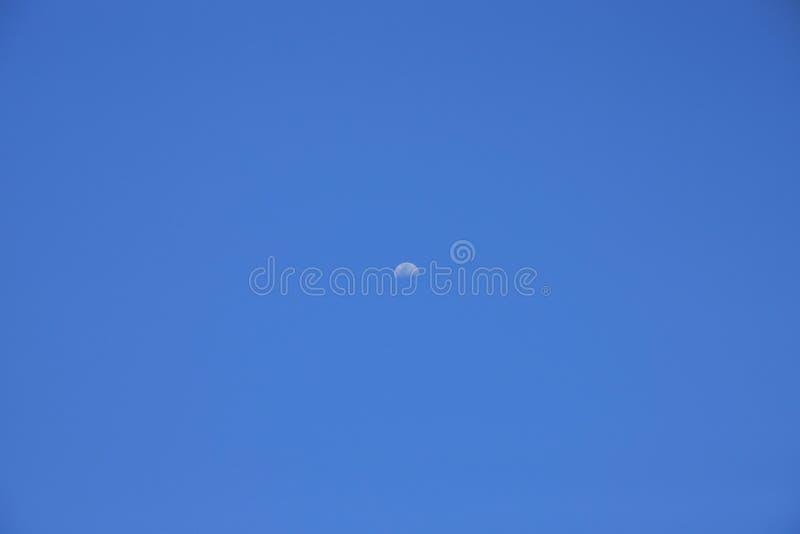 Νέοι φεγγάρι και μπλε ουρανός το πρωί στοκ φωτογραφία