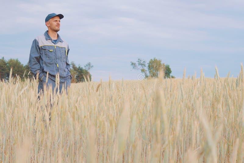 Νέος αγρότης κοντά σε έναν τομέα σίκαλης διάστημα αντιγράφων στοκ εικόνα με δικαίωμα ελεύθερης χρήσης