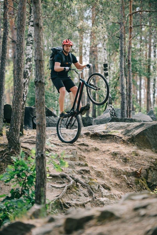 νέος αρσενικός ακραίος ποδηλάτης στην προστατευτική εξισορρόπηση κρανών στην πίσω ρόδα του ποδηλάτου βουνών στοκ φωτογραφία