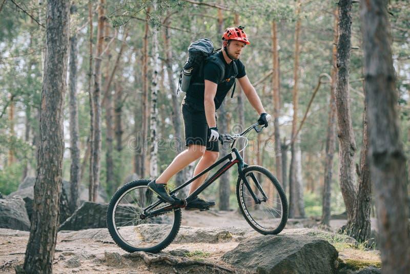 νέος αρσενικός ακραίος ποδηλάτης στο προστατευτικό κράνος που οδηγά στο ποδήλατο βουνών στοκ εικόνες