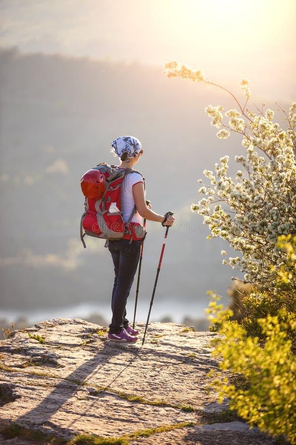 Νέος θηλυκός οδοιπόρος που στέκεται στον απότομο βράχο στοκ εικόνες με δικαίωμα ελεύθερης χρήσης