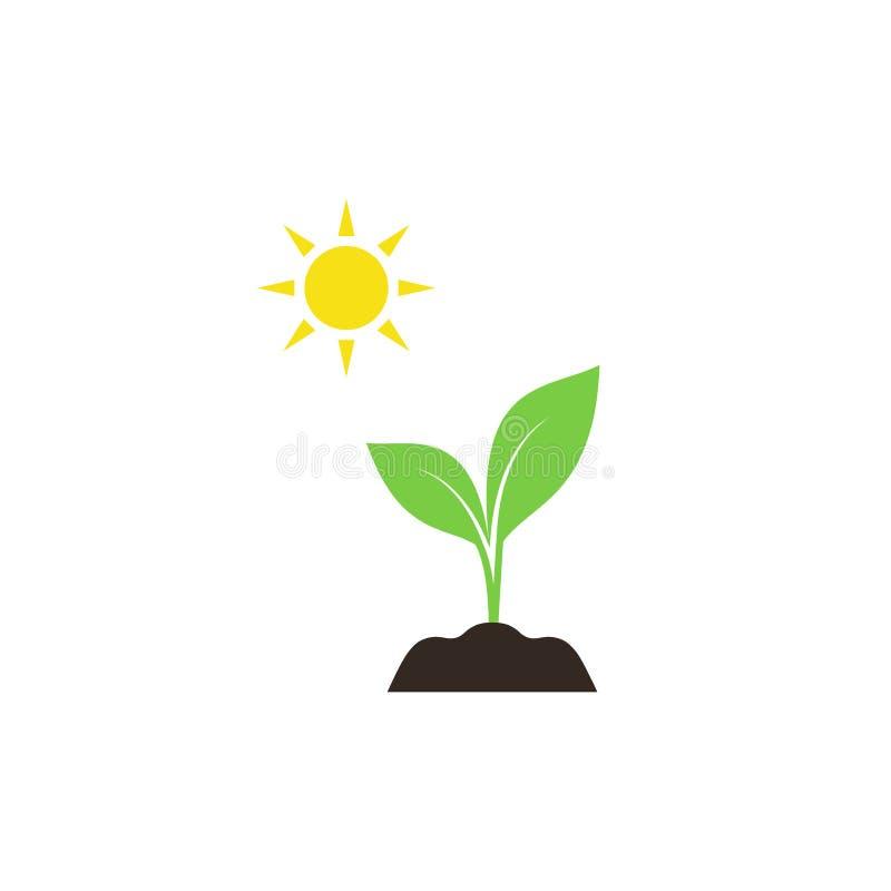 Νέος νεαρός βλαστός στο χώμα με το ζωηρόχρωμο διανυσματικό εικονίδιο ήλιων απεικόνιση αποθεμάτων