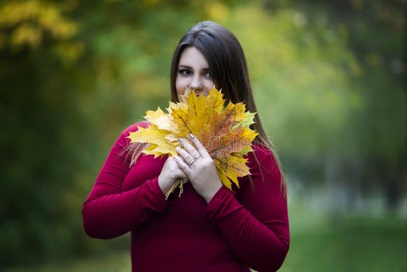 Νέος όμορφος καυκάσιος συν το πρότυπο μεγέθους στο κόκκινο πουλόβερ υπαίθρια, xxl γυναίκα στη φύση, ατμόσφαιρα φθινοπώρου στοκ εικόνα