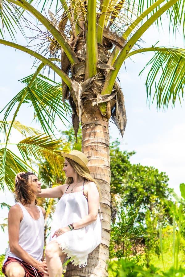 Νέος romatic τουρίστας ζευγών κάτω από το φοίνικα καρύδων Βεραμάν και κίτρινη εικόνα Νησί του Μπαλί Ινδονησία στοκ φωτογραφία με δικαίωμα ελεύθερης χρήσης