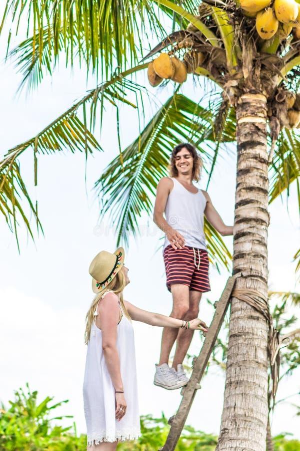 Νέος romatic τουρίστας ζευγών κάτω από το φοίνικα καρύδων Βεραμάν και κίτρινη εικόνα Νησί του Μπαλί Ινδονησία στοκ φωτογραφίες με δικαίωμα ελεύθερης χρήσης