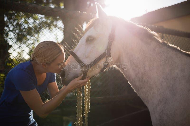 Νέο άλογο φιλήματος γυναικών στη σιταποθήκη στοκ φωτογραφίες με δικαίωμα ελεύθερης χρήσης