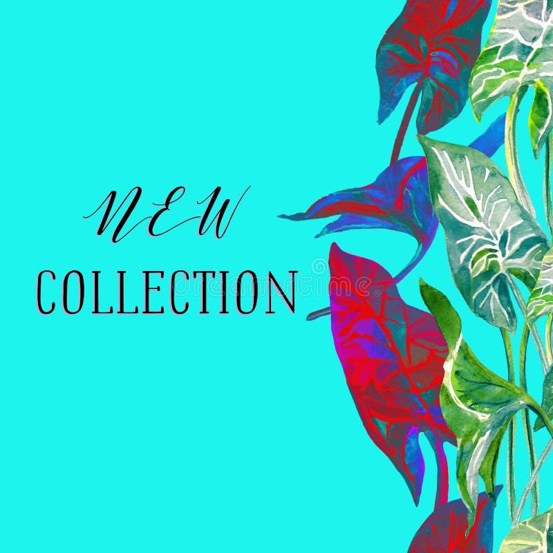 Νέο έμβλημα συλλογής στο καθιερώνον τη μόδα μπλε χρώμα κρητιδογραφιών με τα φωτεινά κόκκινα, μπλε και πράσινα τροπικά φύλλα διανυσματική απεικόνιση