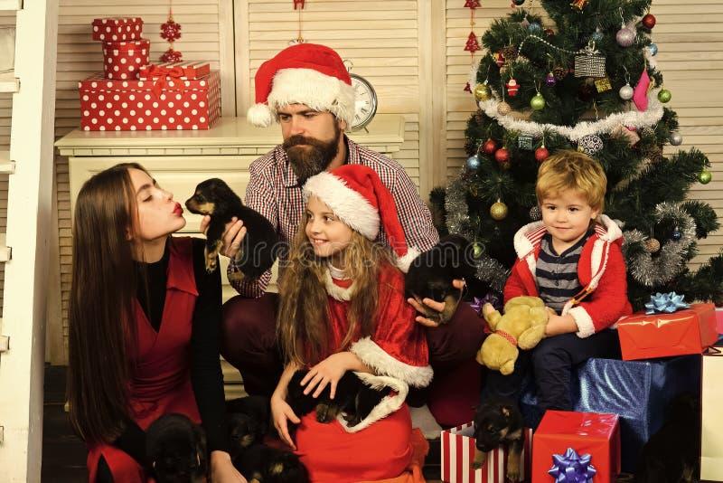 Νέο έτος σκυλιού, ευτυχής οικογένεια Χριστουγέννων με το κουτάβι στοκ εικόνες