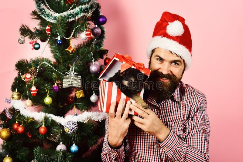 Νέο έτος σκυλιού Ο τύπος με το εύθυμο πρόσωπο ανοίγει το παρόν στοκ εικόνα με δικαίωμα ελεύθερης χρήσης
