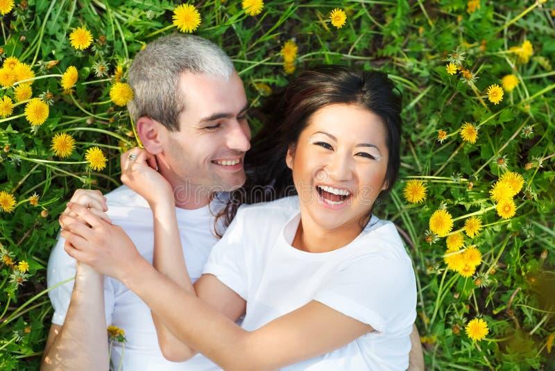 Νέο αγαπώντας ζεύγος που βρίσκεται στην πράσινη χλόη με την πικραλίδα στοκ εικόνα