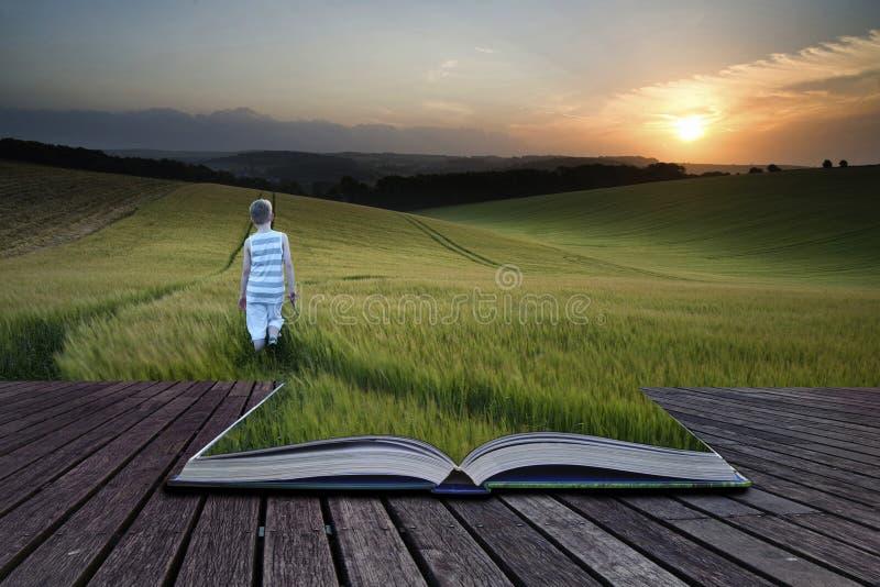 Νέο αγόρι τοπίων έννοιας έννοιας βιβλίων που περπατά μέσω του τομέα α στοκ φωτογραφία με δικαίωμα ελεύθερης χρήσης
