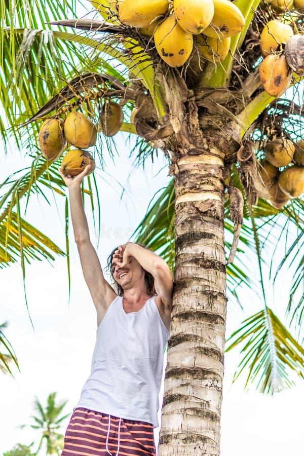Νέο ευρωπαϊκό άτομο που αναρριχείται στο φοίνικα καρύδων Νησί του Μπαλί στοκ εικόνες με δικαίωμα ελεύθερης χρήσης