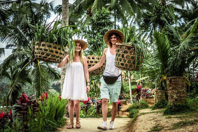 Νέο ζεύγος μήνα του μέλιτος στους τομείς ρυζιού του νησιού του Μπαλί Διακοπές ταξιδιού στην έννοια του Μπαλί στοκ εικόνες με δικαίωμα ελεύθερης χρήσης