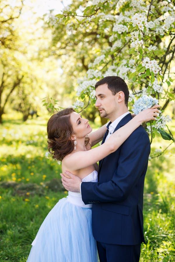 Νέο ζεύγος που αγκαλιάζει στον ανθίζοντας κήπο άνοιξη Αγάπη και ρομαντικό θέμα στοκ φωτογραφία