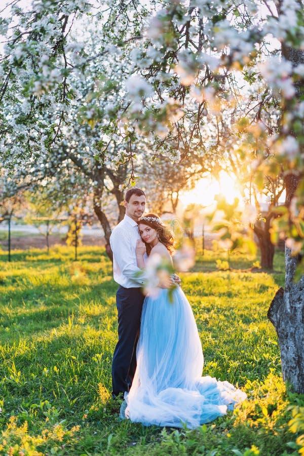 Νέο ζεύγος που αγκαλιάζει στο ηλιοβασίλεμα στον ανθίζοντας κήπο άνοιξη Αγάπη και ρομαντικό θέμα στοκ εικόνες