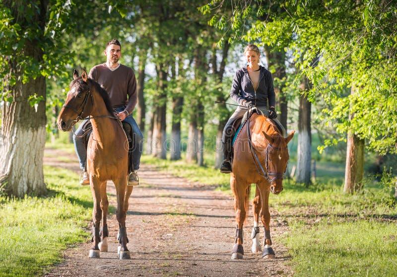 Νέο ζεύγος που οδηγά ένα άλογο στοκ φωτογραφία με δικαίωμα ελεύθερης χρήσης