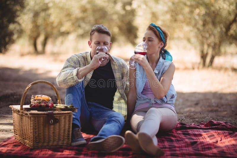 Νέο ζεύγος που πίνει το κόκκινο κρασί καθμένος στο αγρόκτημα στοκ φωτογραφίες