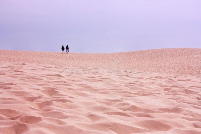 Νέο ζεύγος που περπατά στην έρημο Dune du Pilat, Γαλλία στοκ φωτογραφία με δικαίωμα ελεύθερης χρήσης
