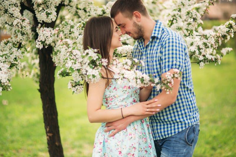 Νέο ζεύγος που φιλά την άνοιξη το πάρκο δέντρων μηλιάς ανθών στοκ εικόνες