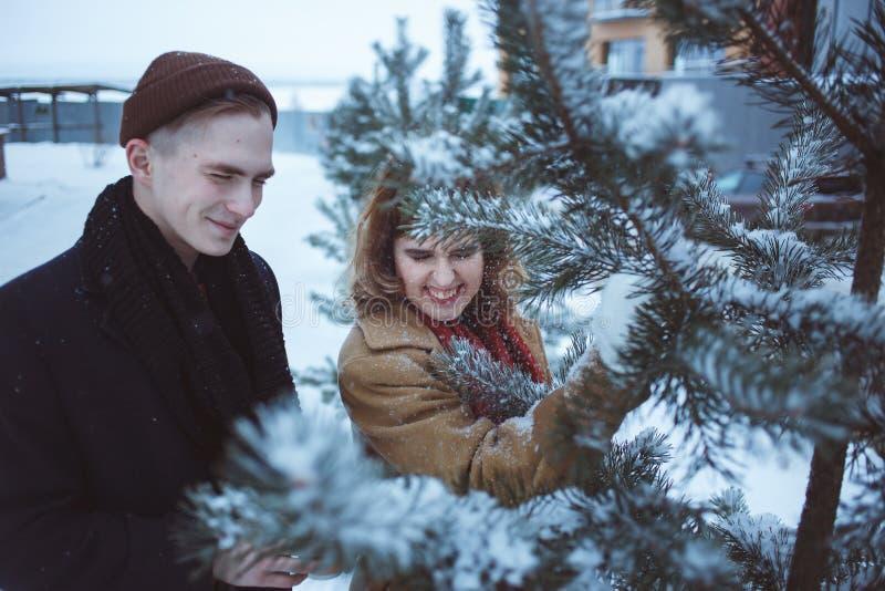 Νέο ζεύγος στο καλυμμένο κλάδοι χιόνι πεύκων Φίλη και φίλος που απολαμβάνουν τις ευτυχείς διακοπές ημέρας βαλεντίνων ` s στιγμών στοκ φωτογραφίες με δικαίωμα ελεύθερης χρήσης